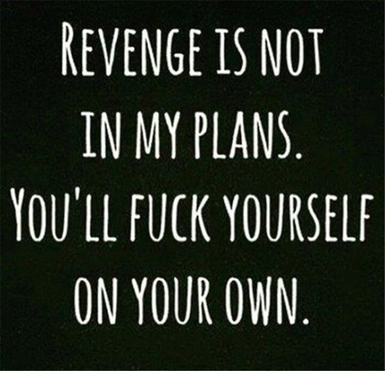 Revenge is not in my plans. You'll fuck yourself on your own.