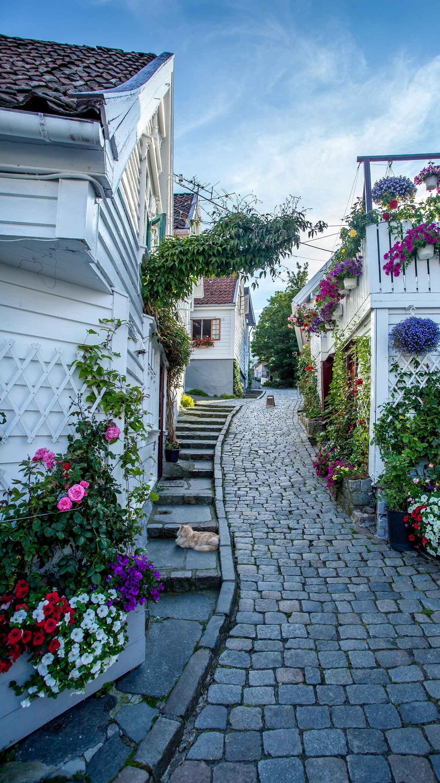 Norway - Stavanger walks through the narrow alleys in the old town, passing through rows of old white cottages and enjoying the laid-back Nordic time.