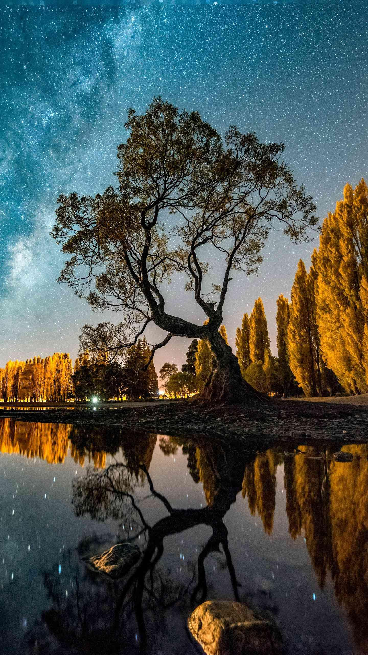 "The most beautiful starry sky in the world. New Zealand's starry sky is world famous and is the world's first ""International Dark Sky Reserve."""