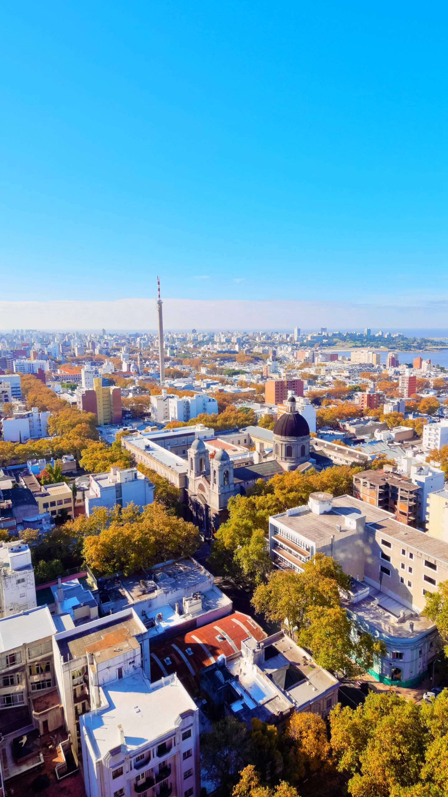 """City of Roses: Montevideo. The climate here is mild, with year-round trees and flowers, and is known as the """"Swiss of South America""""."""