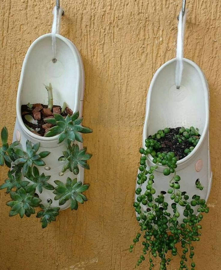 unique succulent garden ideas for home decor; succulent garden outdoor design; succulent plant decor ideas