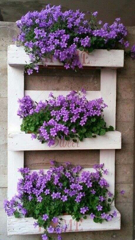 On A Budget DIY Projects Pallet Garden Design Ideas,indoor jungle,Small Spaces Garden ideas,Plant shelf,Green home,plant decor,indoor garden herb,plant wall,home garden,home design ideas,vertical garden.
